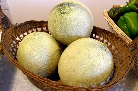 Meloni Honey Sweet